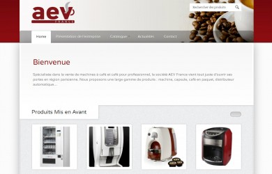 AEV France - Customisation WordPress (home page)